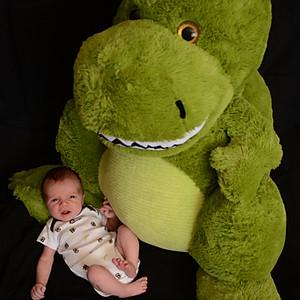 Rex - 3 weeks old