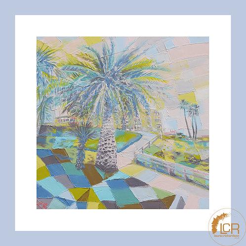 Pismo Beach Palm: 40cm > 50cm