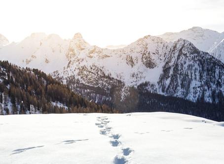 Mit Licht gegen den 'Winterblues' - 10 Kriterien für das ideale Licht