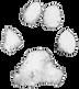LD_Logo_trans_white.png