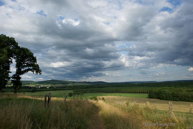 Paysage de Bourmont, Haute-Marne