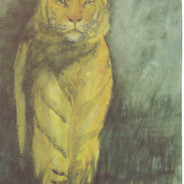 Tiger in Twilight