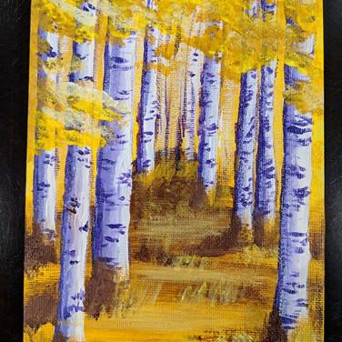 New Hampshire Birch Trees