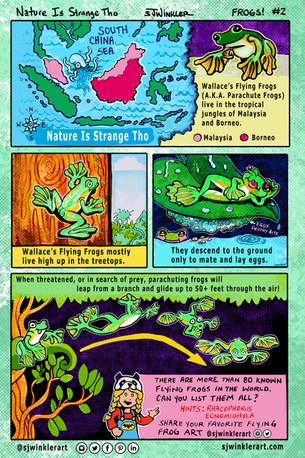 @sjwinklerart_NIST Frogs #2.jpg