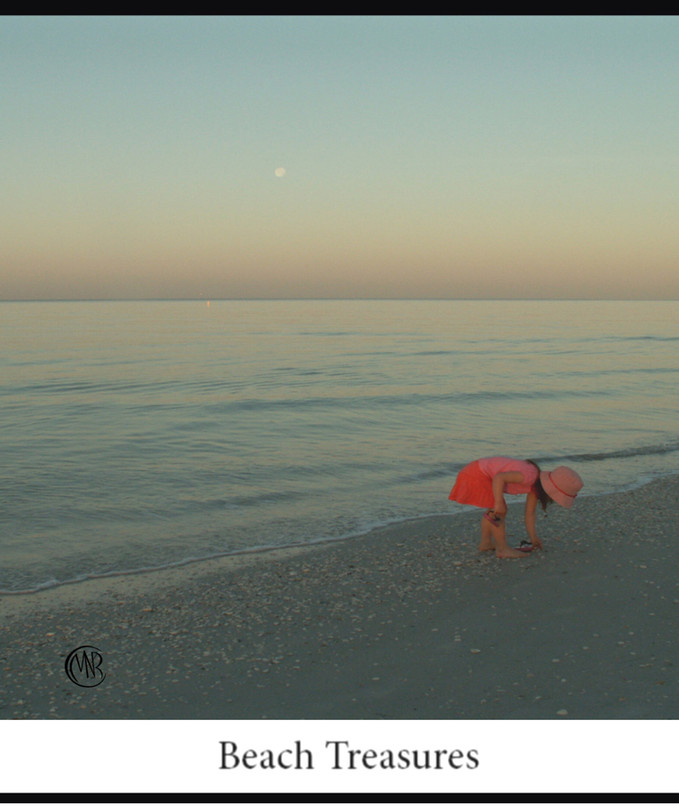 Beach_Treasuresresized .jpg