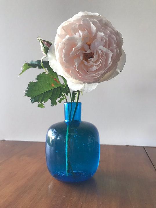 white vase IMG_3442.jpeg