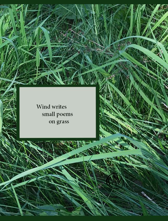 Wind_Writes_re Signed.jpg