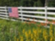 stripes IMG_3452.jpeg