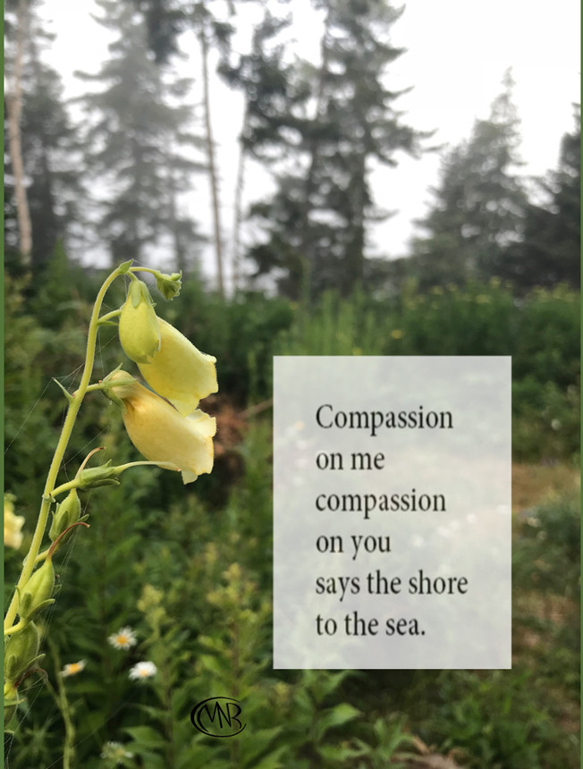 Compassion_resigned.jpg