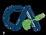 9060CA_logo_icai-removebg.png