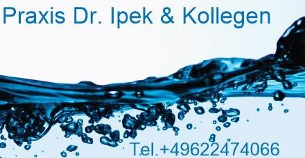 Logo Ipek