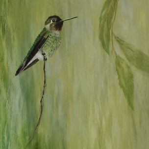 Hummingbird Series #5