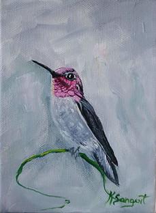 Hummingbird Series #08