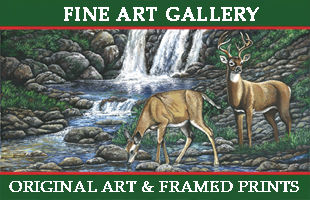 Home page art gallery button.jpg