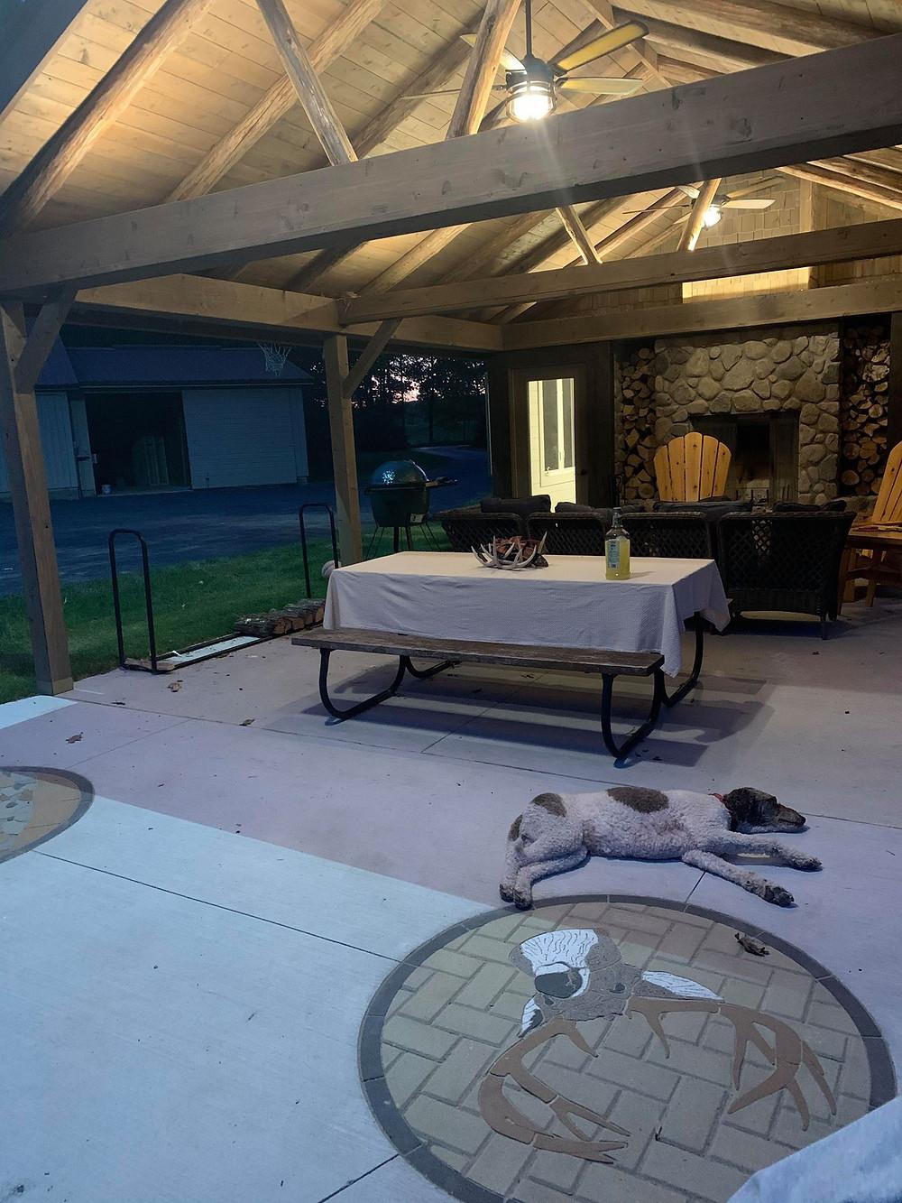 Paverart, custom inlay, paverart buck, landscape design, patio ideas