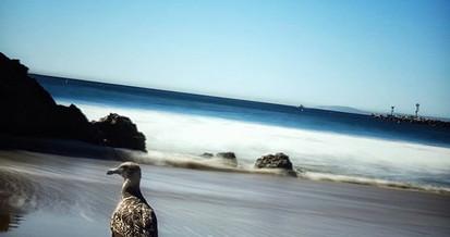 Nature's Good Side—_•_•_•_#naturephotogr