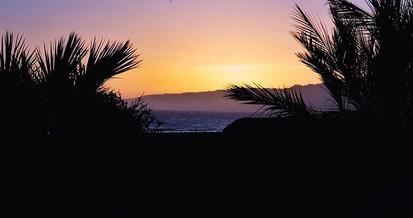 In Paradise—_•_•_•_#beachlife #feelingbe