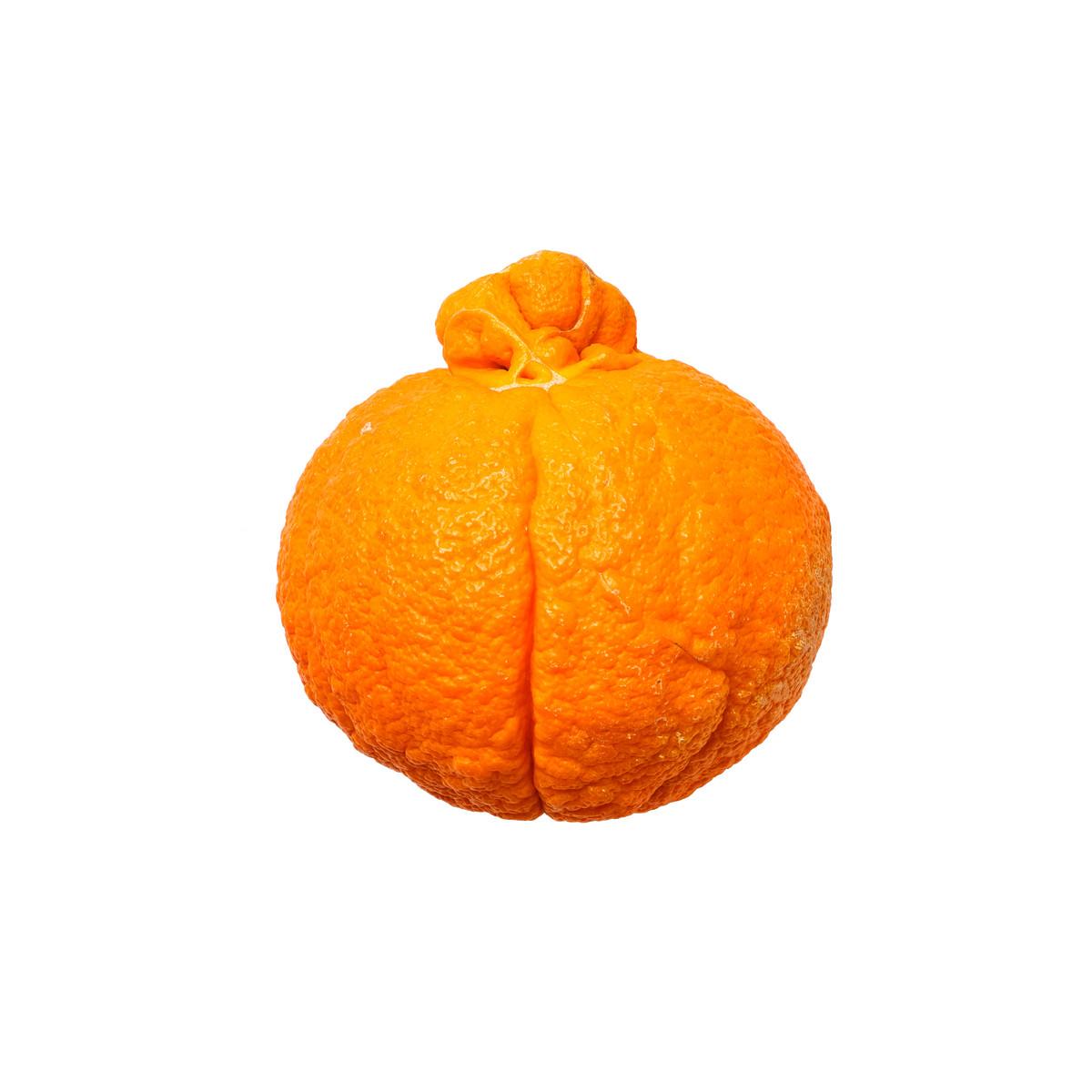 20200228_Gemüse:Obst_Freisteller_11.jpg