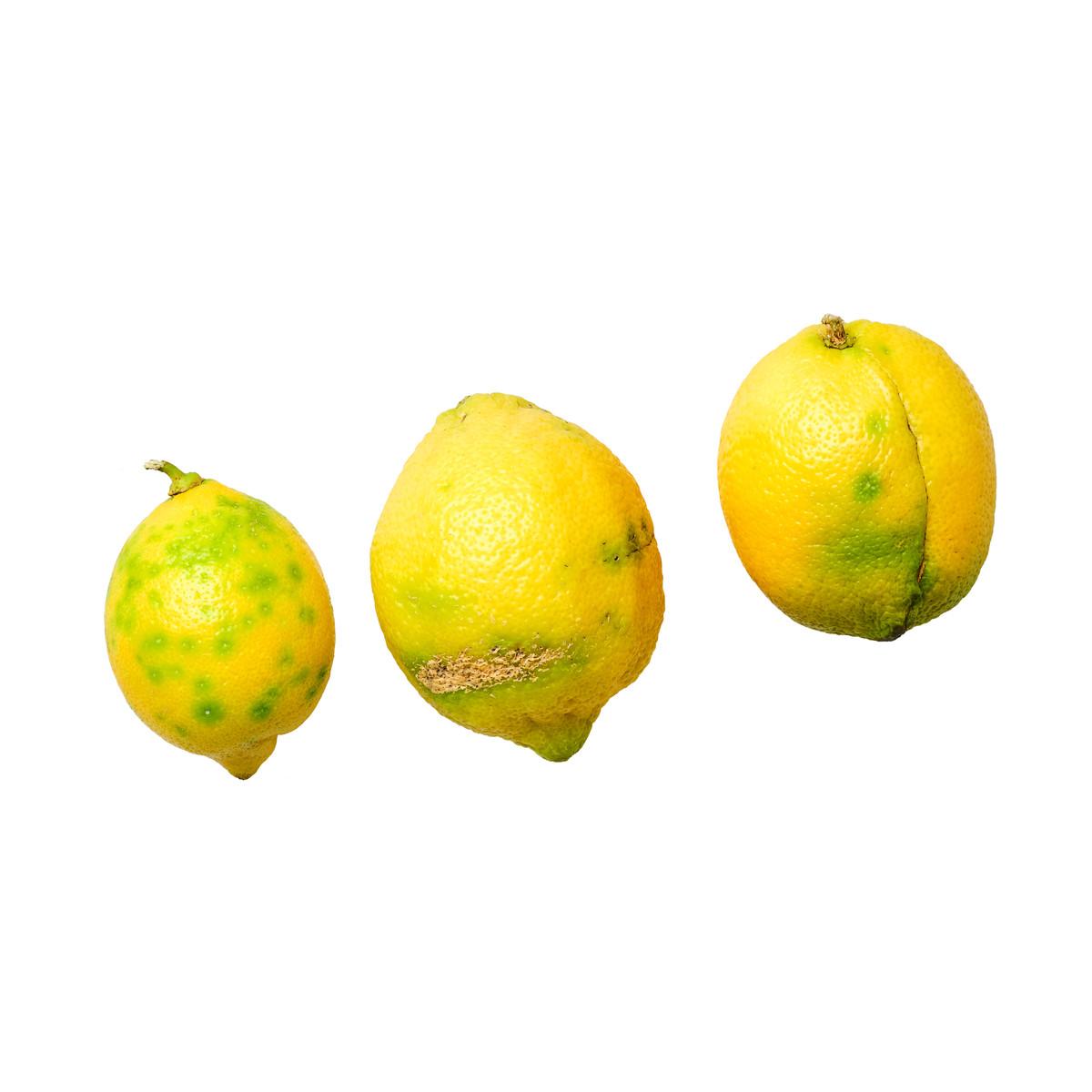 20200228_Gemüse:Obst_Freisteller_17.jpg
