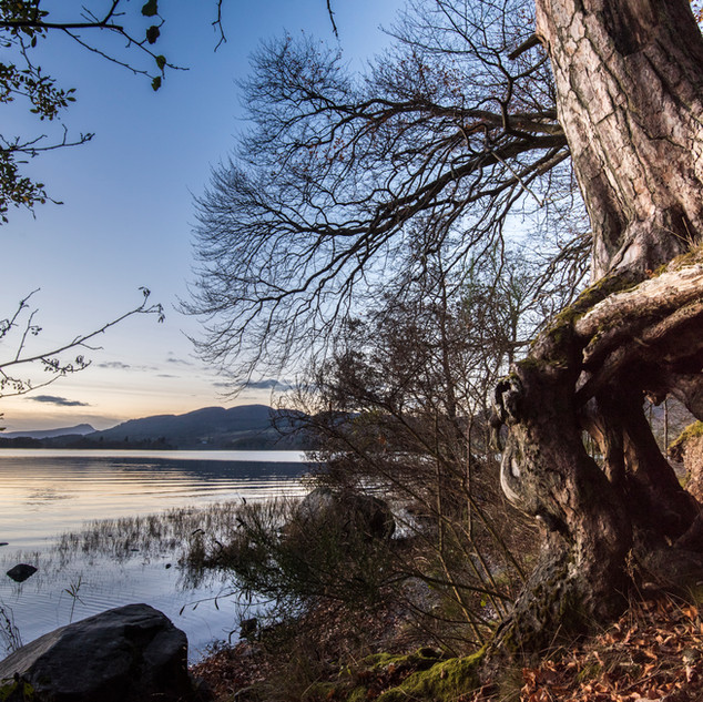 Lake of Menteith, picnic spot