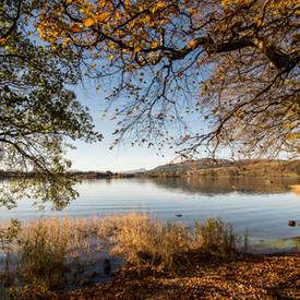 Lake of Menteith, Autumn