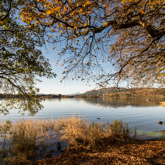 Lake of Menteith, Autumn