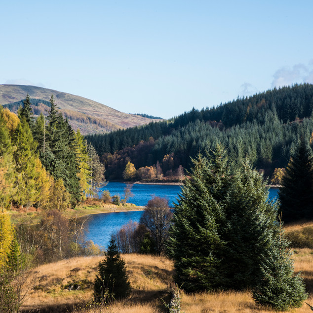 3 Lochs Drive, The Three Lochs Drive can be found on Duke's Pass, just north of Aberfoyle. A wonderful 7 mile drive through the forest that can also be walked and cycled.