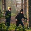 Hide & seek in the forest