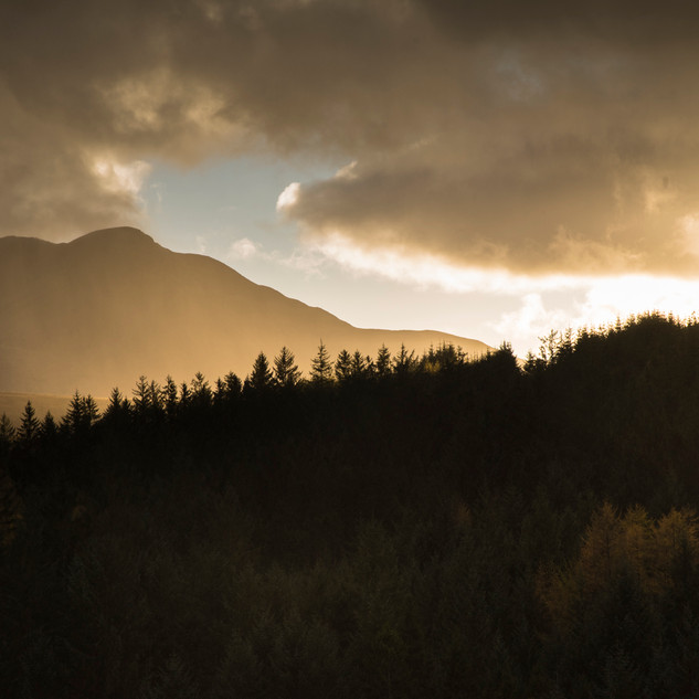 spectacular evening light on the road from Inversnaid to Aberfoyle
