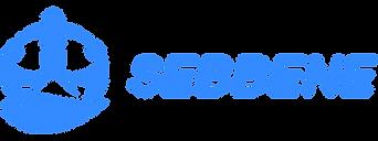 Logo_Sebbene_Bleu.png