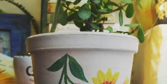 Teracotta Painted Plant Pot