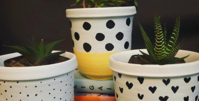 Teracotta Painted Pots