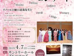 【出演情報】2019年4月7日「桜の吹雪コンサート」