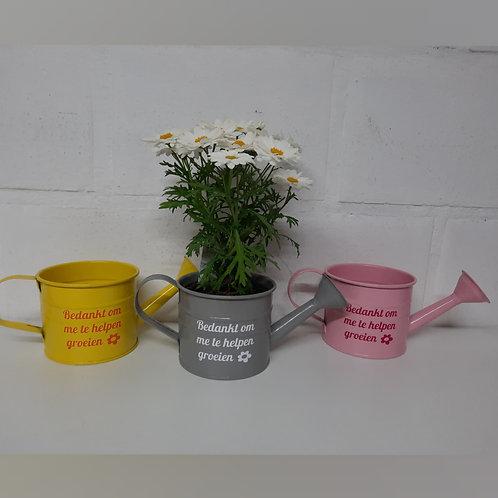 Gietertje:  Bedankt om me te helpen groeien! incl. bloemetje.