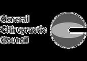 general chiroptic council.png