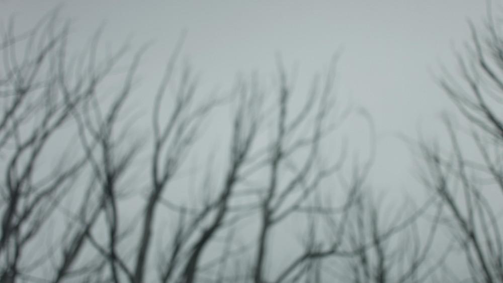 Paean FilmGrab011.jpg