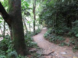 Trails Rio Claro