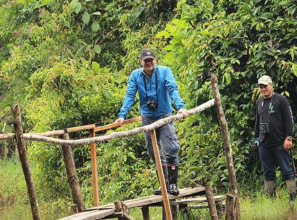birding, birdwatching, birds, birdingphotography, colombia, travel, birdstagram, Birdingforliving