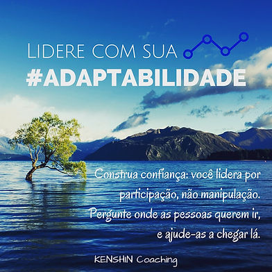 Adaptabilidade_34lentes.JPG