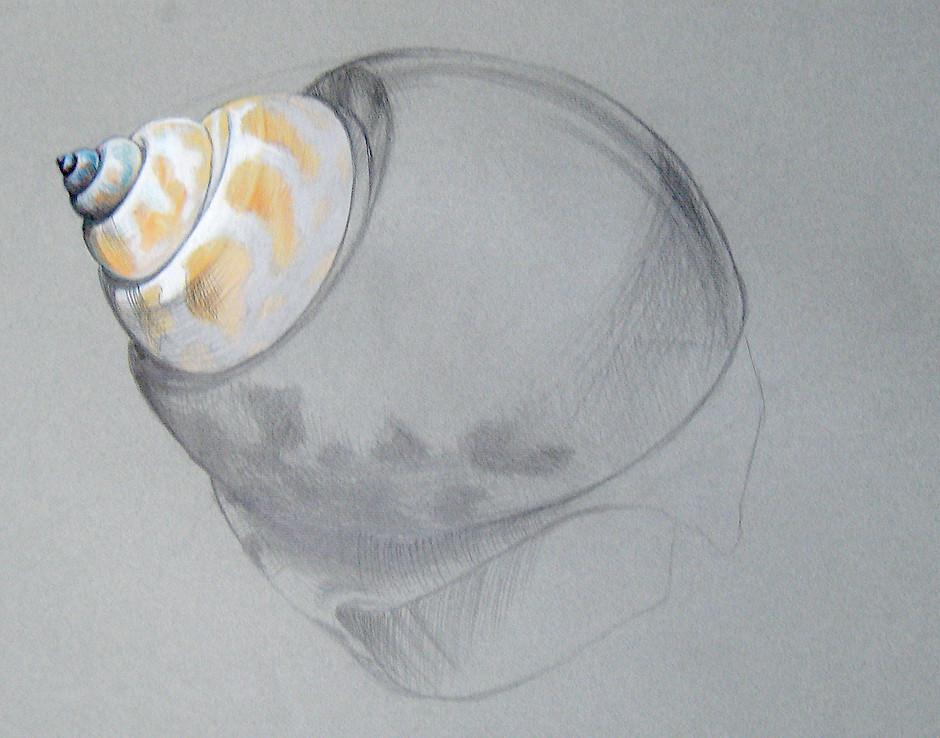 Zeichnung34.jpg