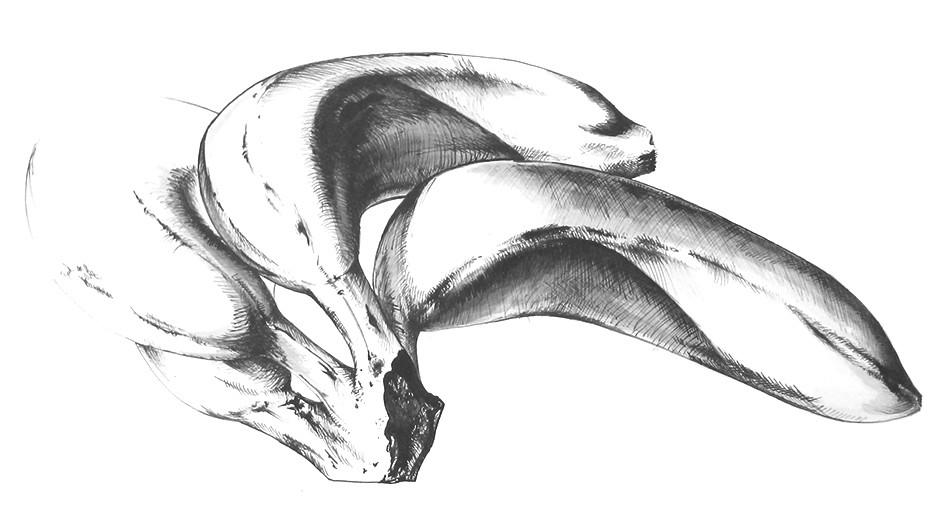Zeichnung45.jpg