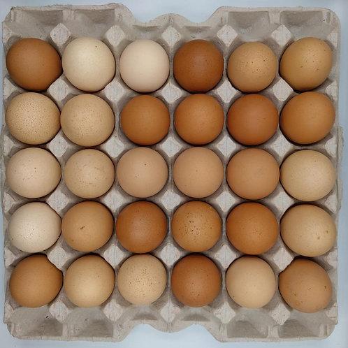 Free Range Eggs (tray of 30)