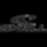 oneill-logo.png