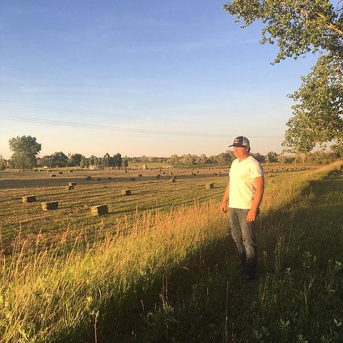 Mixed Field Hay
