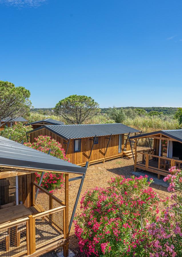 Lodges en bois en pleine nature.jpg