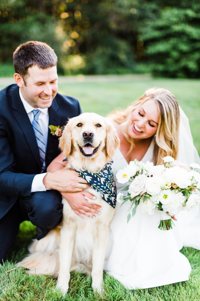Inspiration for Including Your Dog at Your Wedding | Maine Wedding Photographer