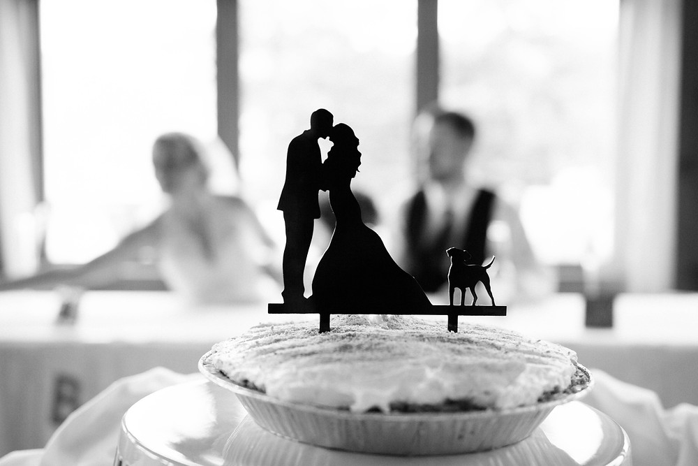 AFogartyWeddingPhotography-SundayRiverMaineWedding-CakeTopperwithDog.jpg