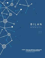 rapport annuel 2016-2017.jpg