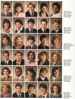 86-61w