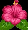 tropical-clipart-flower-hawaiin-4.png